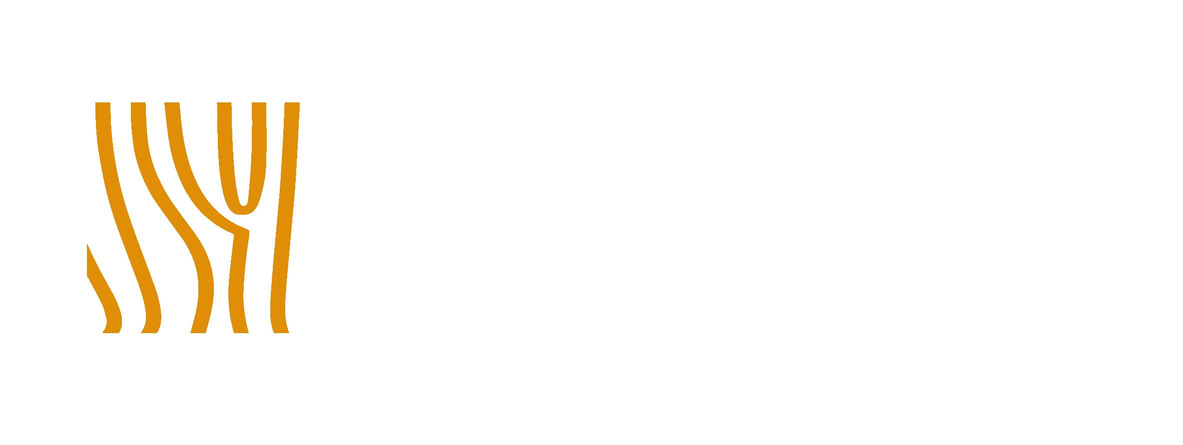 WCTE2020